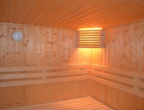 Supplements to Assist with Sauna Detoxification